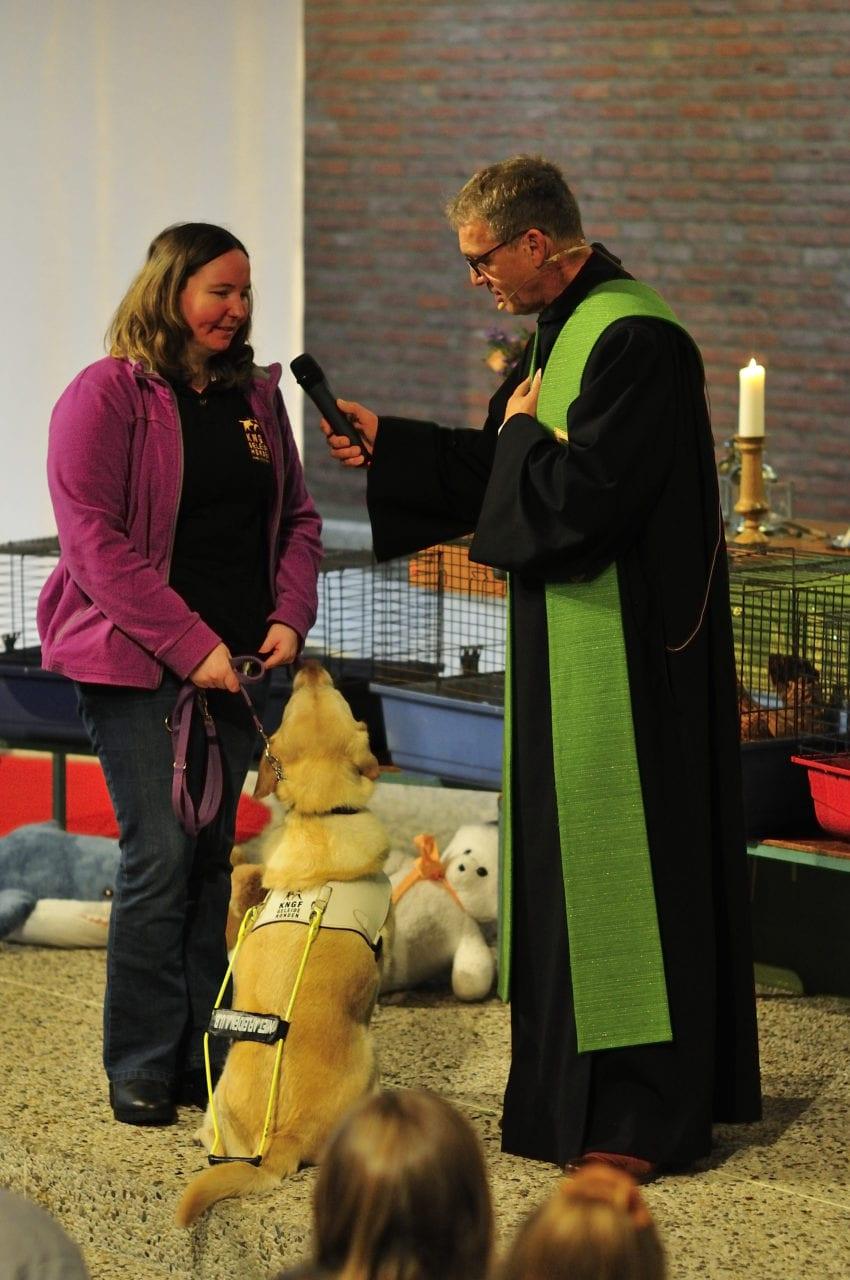 KNGF geleidehond in kerk